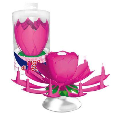 Fontana pirotecnica Fiore Musicale Rosa