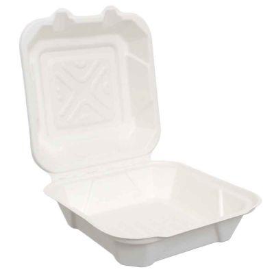 50 Box con coperchio da asporto in polpa compostabili 21,5x 21,5xh8 cm